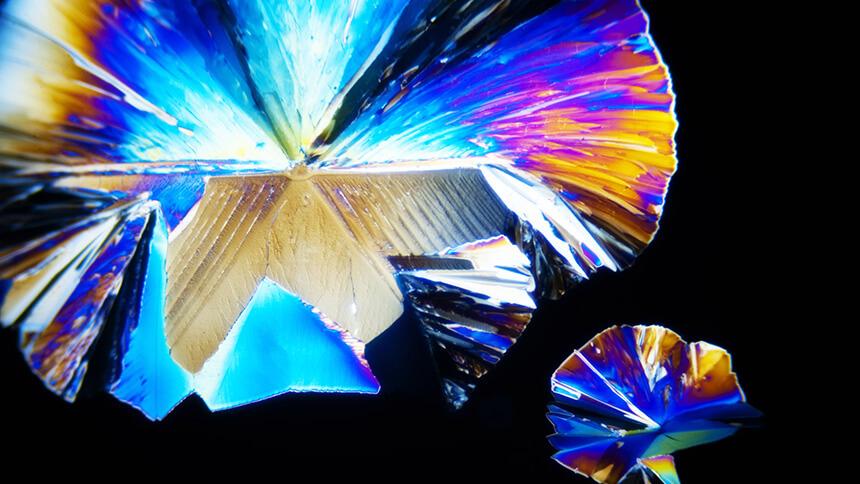 Labomed Lx POL Polarizing Microscope MaxLite™ Optics