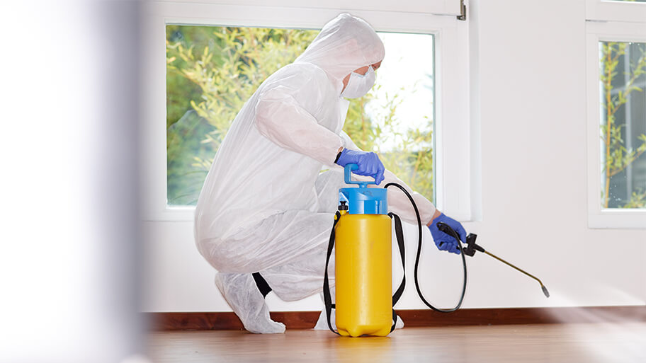 Why should you book Germ Squad Pro's disinfection services?