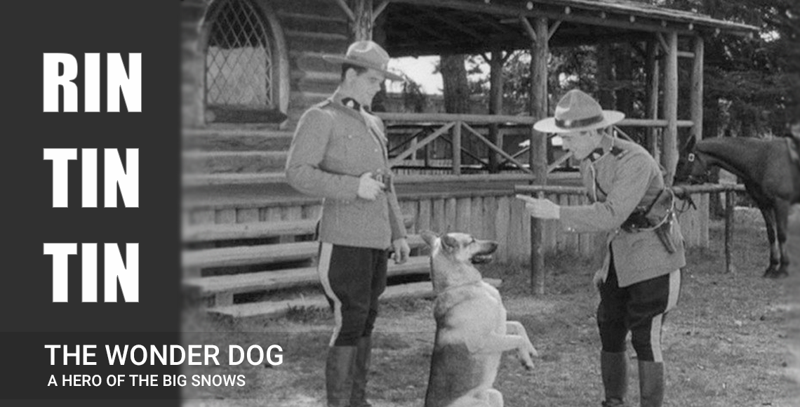 Characterization of German shepherd in movies